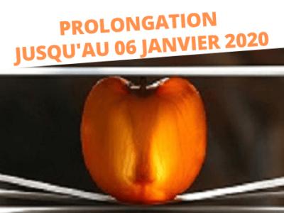 PROLONGATION PCC exposition photographie Montauban galerie du Fort Marie Antoinnette